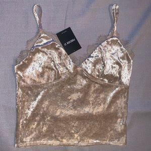 Nude Velvet & Lace Crop Top